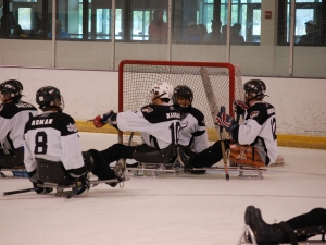 Sled Hockey 2009